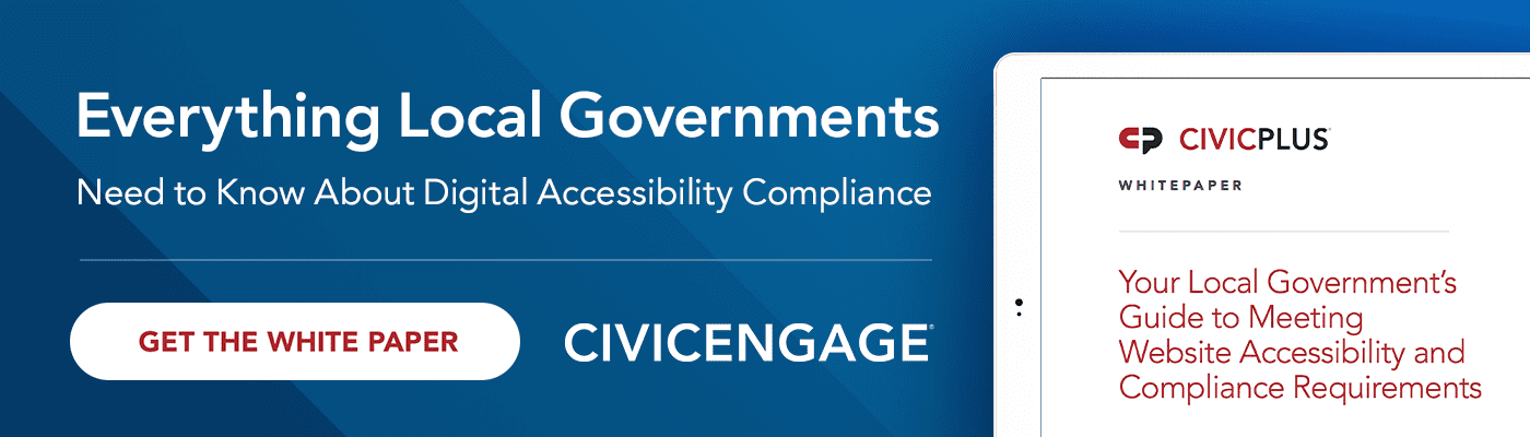 Local Government Guide to Meeting Wen Accessibility White Paper