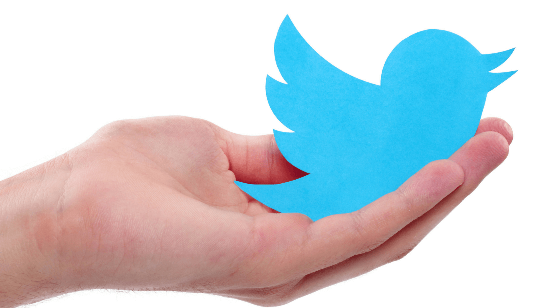 Best Practices for Using Twitter to Engage Citizens