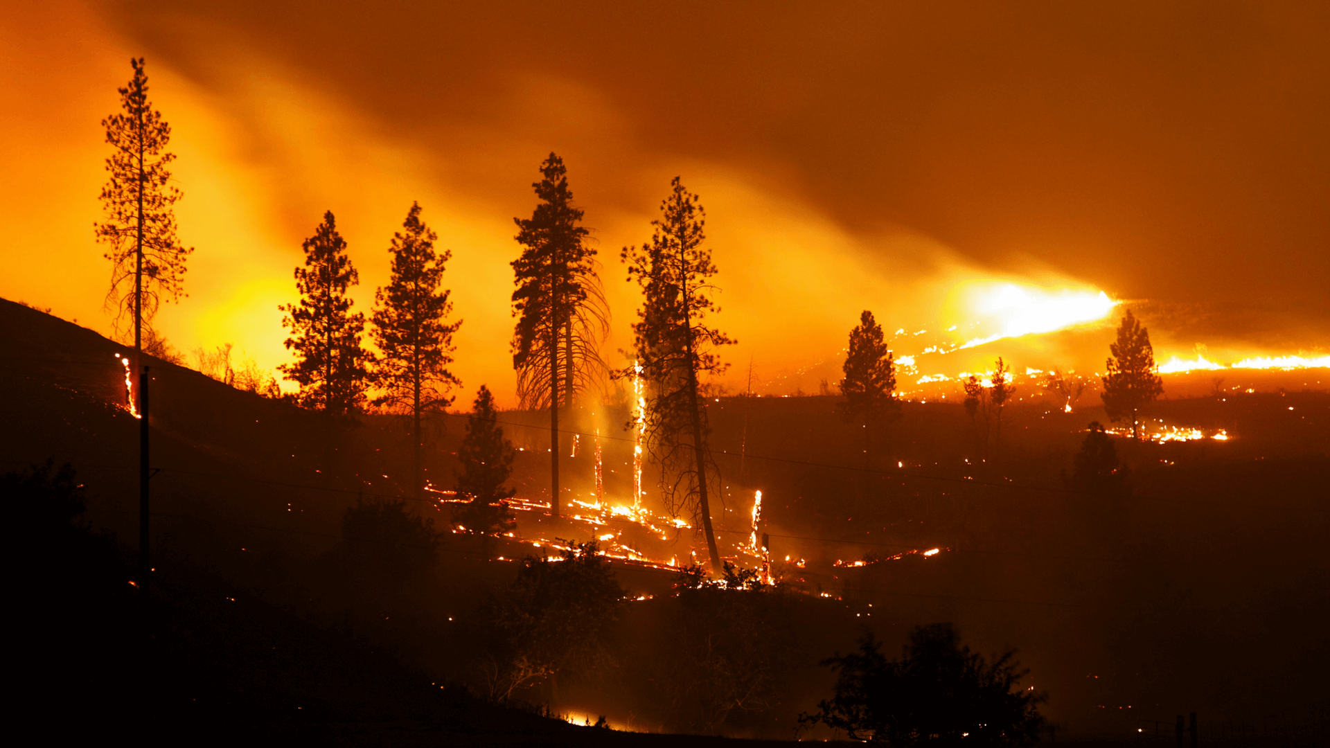 Wildfires: Emergency Preparedness and Citizen Communications
