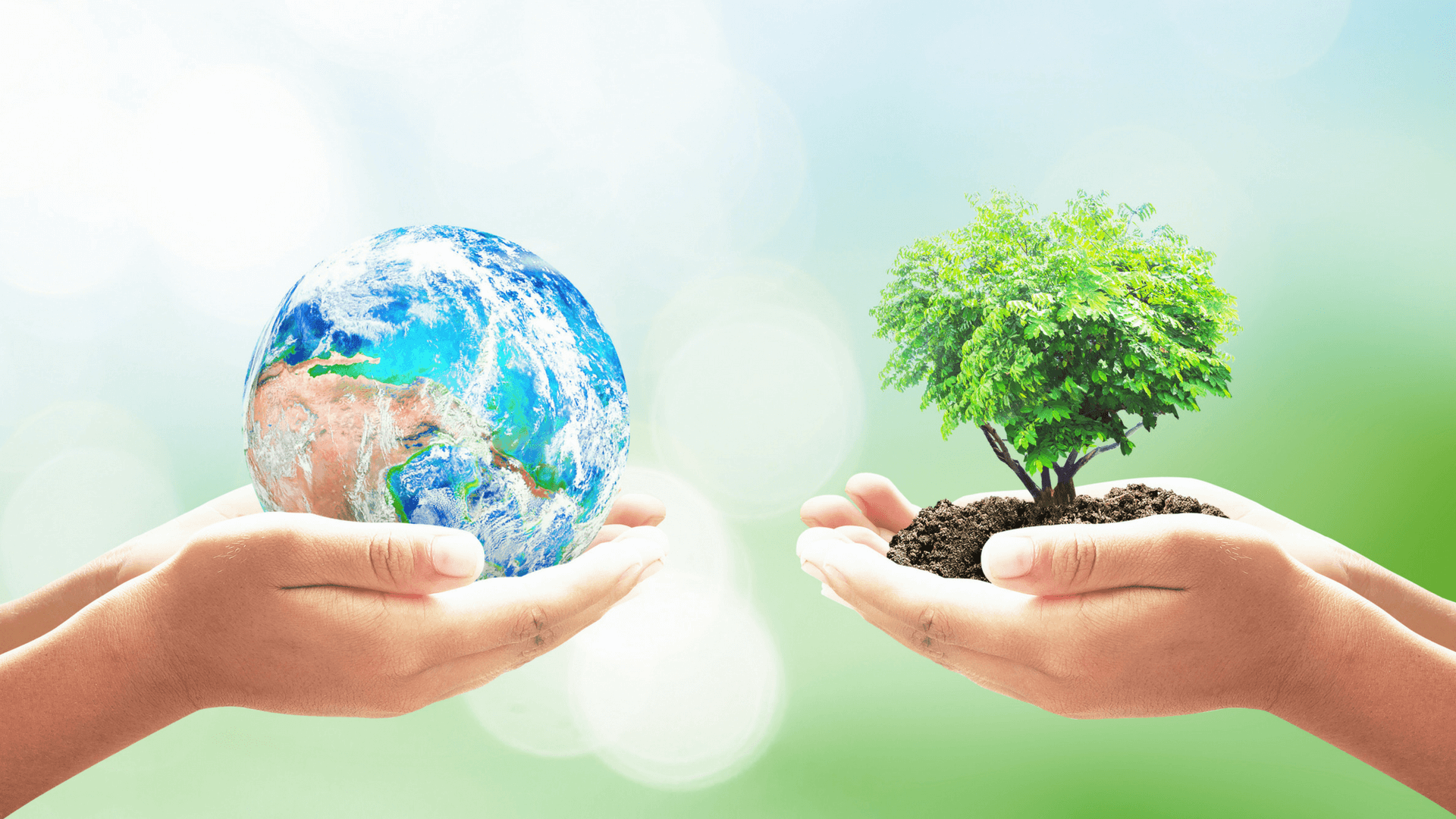 Go Green This Earth Day With Applicant Tracking Software